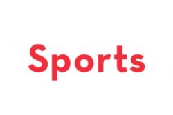 Apoyabrazos universal Race Sport universal